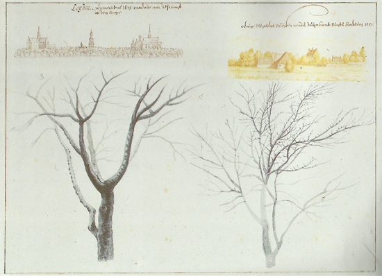 views of Leiden and Haarlem and Two Trees, Saenredam