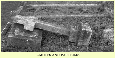 motes and particles