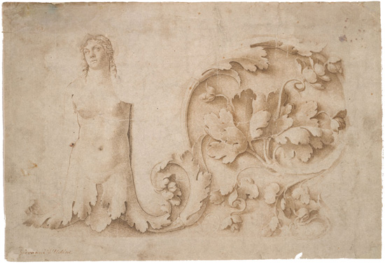 study for a frieze with acathus and siren